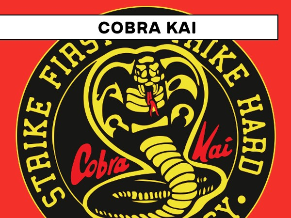 Shop Cobra Kai T-Shirts and Apparel